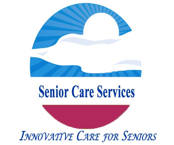 elderly care essays